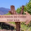 Tour pela estrada do vinho na Toscana